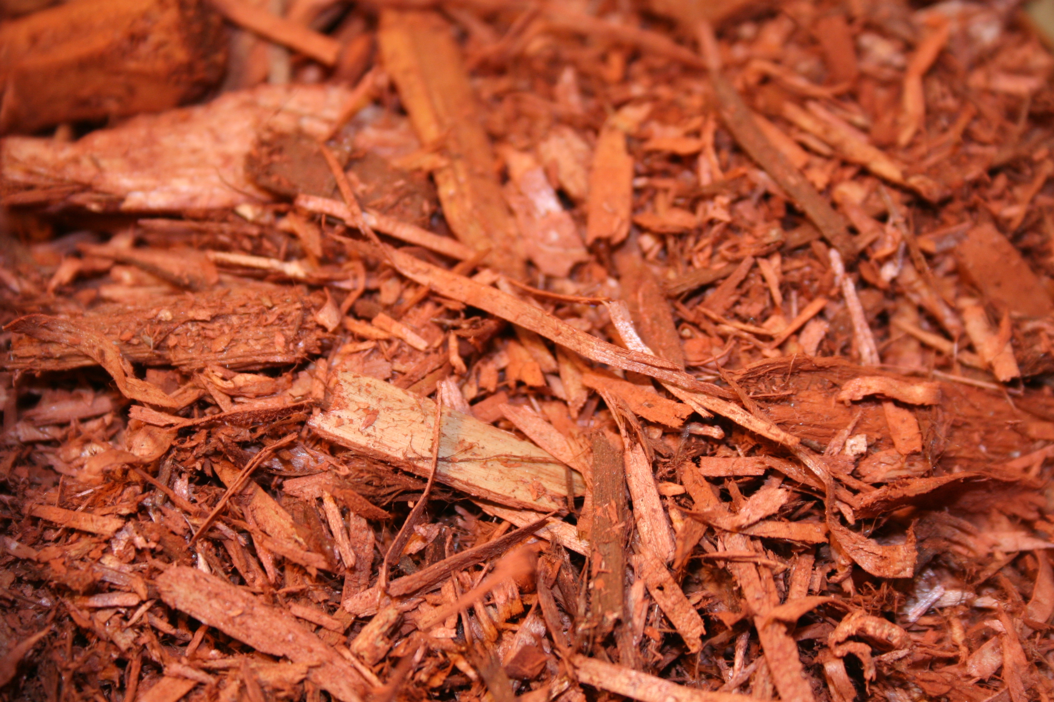 Atlantic Mulch - Red Mulch