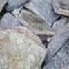North Carolina Swiss Sparkle Flagstone