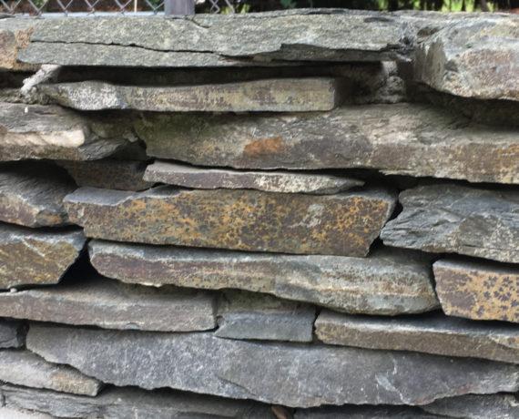 swiss-sp-wall