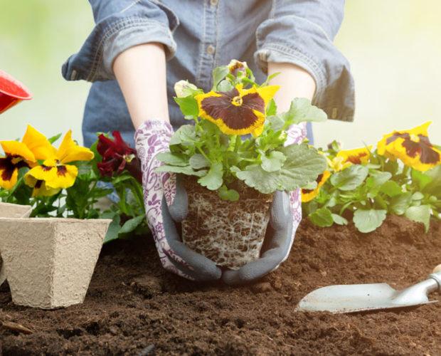 Atlantic Mulch - Types of Gardens