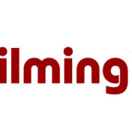 wilm-grill-logo